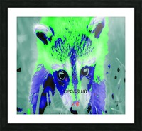 abstract Opossum Picture Frame print