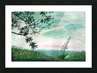 Landscape_DKS3 Picture Frame print