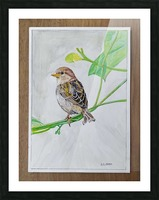 Sparrow_DKS Picture Frame print