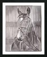 Horse_DKS Impression et Cadre photo