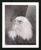 Eagle_DKS Impression et Cadre photo