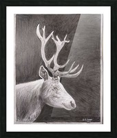 Stag_DKS Picture Frame print