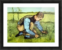 Cutting Grass by Van Gogh Picture Frame print