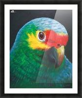 Sam Picture Frame print
