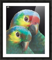 Sam and awesam Picture Frame print