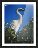 White Heron 1 Picture Frame print