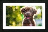 esa dog Picture Frame print