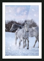 Horses in the Snow Picture Frame print