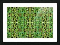 GOLDEN BEAR III Picture Frame print