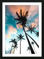 Palm Tree Sunrise Picture Frame print