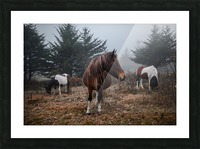 In the Wild Picture Frame print