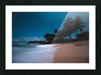 Tropical Night Picture Frame print