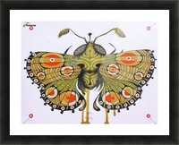 moth Picture Frame print