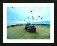 DSCF2094 Picture Frame print