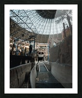 Abandoned Indiana Jones Theme Park Picture Frame print