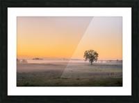 Moring Fog Picture Frame print