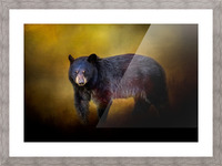Bear Picture Frame print