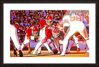 1981 Bedlam Action Picture Frame print