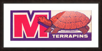1957 Maryland Terrapin Art Reproduction Picture Frame print
