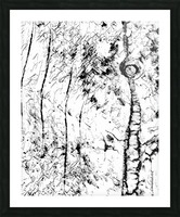 Black & White Texture Nature Picture Frame print