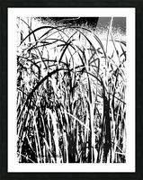 Black & White Nature Texture Picture Frame print