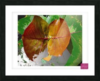 Tropical Tan Leaves Picture Frame print