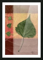 Leaves on Peach & Salmon 2x3 Picture Frame print