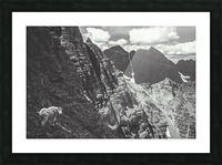 Pyramid Peak Mountain Goat Picture Frame print