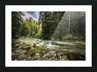 Rocky Mountain Forest Picture Frame print