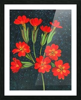 Red flowers shining in a magical starry night Picture Frame print