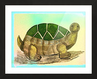 Turtle  Picture Frame print