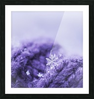 Purple Snowflakes Picture Frame print