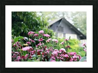 Cottage Picture Frame print
