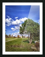 Tree and blue sky with clouds Picture Frame print
