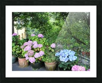 Stuffed in a Pot Picture Frame print