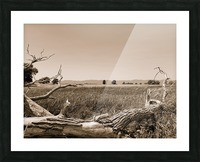 Isle aux Grues Picture Frame print