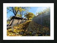 Autumn leaves in the park Picture Frame print