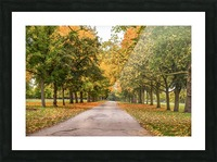 Autumn colours Picture Frame print