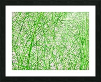 Natures Line Drawing Picture Frame print