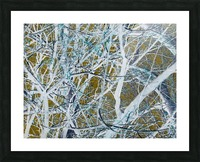 Funky Branches Picture Frame print