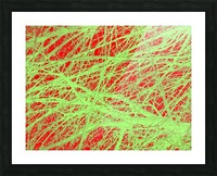 Tree-Line Drawing Picture Frame print