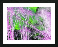 Tree on a Line Picture Frame print