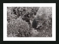 Cave entrance Picture Frame print