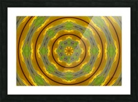 Sunflower G K1 Picture Frame print