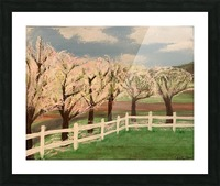 Trees In Bloom Picture Frame print