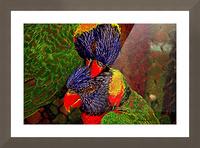 Lovebirds Picture Frame print