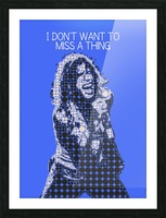I Dont Want to Miss a Thing   Steven Tyler Picture Frame print