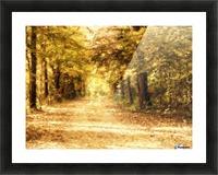 Autumn Path 2 Picture Frame print