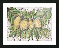 Sorrento_ fresco Picture Frame print