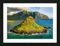 Mokolii  Picture Frame print